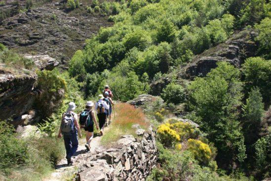 Les Cévennes entre Ardèche et Lozère