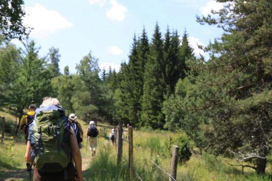 Le chemin de Stevenson guidé - Partie Nord
