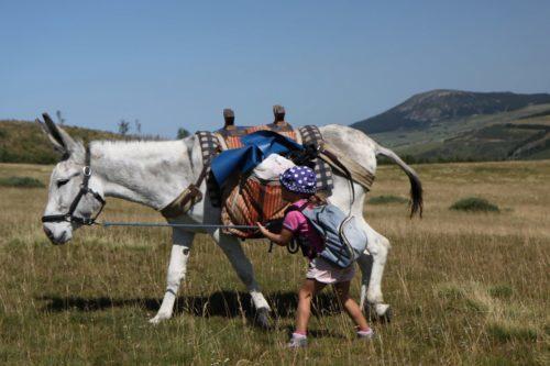 Ma 1ère randonnée itinérante avec un âne dans les Monts d'Ardèche