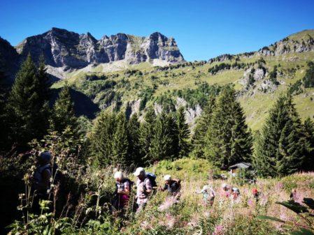 Séjour de randonnées en Haute Savoie