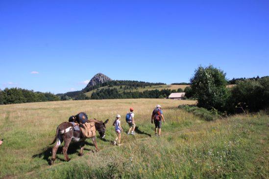 Rando tour guidé des volcans des Monts d'Ardèche avec un âne