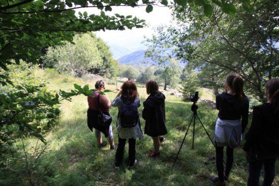 Balade & observation marmottes