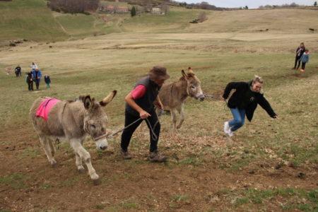 La 3e fête de l'âne et de la randonnée : un vrai succès