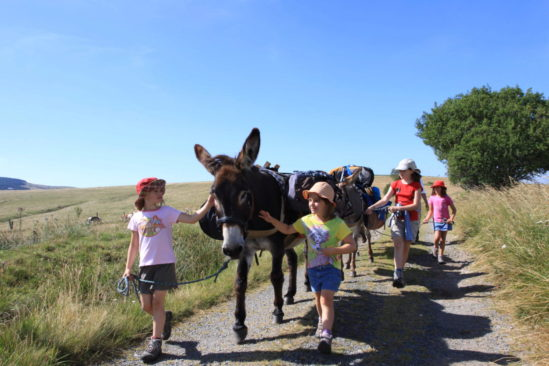Rando itinérante avec un âne pour les plus petits au cœur des monts d'Ardèche