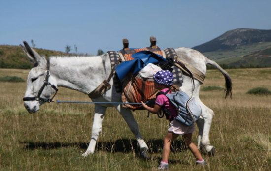 Ma 1ère expérience de rando avec un âne