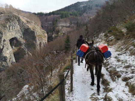 Transport de matériaux avec un âne sur le sentier de la cascade du Ray Pic